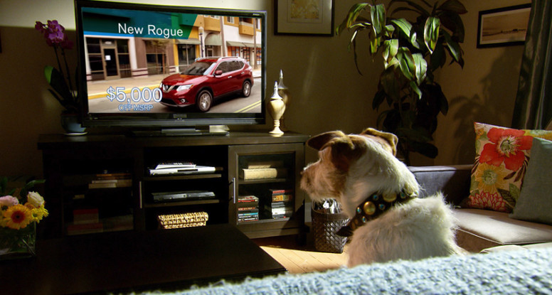Dog-wathching-tv-842x450-776x415